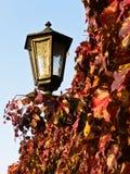 由灯笼的红色和黄色秋叶在Kalemegdan堡垒墙壁 库存照片