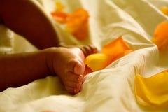 由玫瑰花瓣的非裔美国人的婴儿脚和腿周围 库存图片
