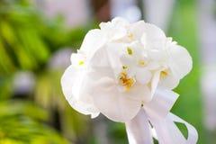 由白色兰花做的婚礼花束 库存照片