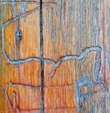 由白蚁的木样式 免版税库存照片
