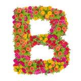 由百日菊属花做的信件B字母表 图库摄影