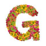由百日菊属花做的信件G字母表 库存照片