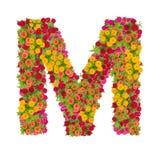 由百日菊属花做的信件M字母表 免版税库存照片