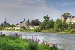 由盛大河的花在剑桥 图库摄影