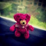 由秸杆和花做的玩具熊 免版税库存图片