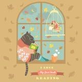 由窗口的滑稽的猫读书 免版税库存照片