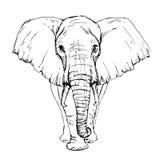 由笔非洲大象正面图的剪影 皇族释放例证
