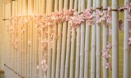 由纸做的浅粉红色的人造花在墙壁上装饰  免版税库存图片