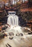 由脚桥梁的森林瀑布 免版税库存照片