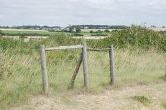 由艾塞克斯海岸的篱芭结构 免版税库存图片