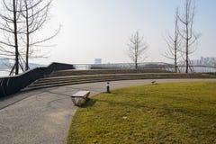 由草坪的路边长凳在湖边前在晴朗的w操刀了平台 图库摄影