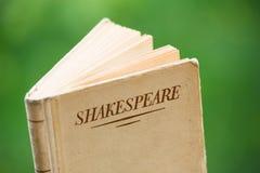 由莎士比亚所著的书绿色背景的 免版税库存图片