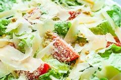 由莴苣、乳酪和西红柿做的素食沙拉 免版税库存图片