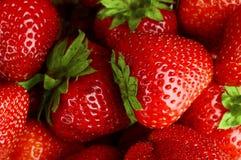 由许多红色水多的新鲜的草莓做的背景 免版税库存照片