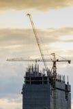 由起重机抬头在大厦的操作为设施工作、建筑业在城市和操作的举的工具的 库存图片
