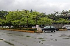 由路的停车场在雨中 免版税图库摄影