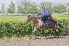 由运动员的讲话在跑马场的一匹马的开头的 库存图片