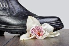 由鞋子的被碰撞的花在木地板上 库存照片