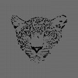 由织地不很细背景做的猎豹 免版税库存照片