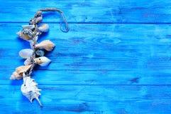 由贝壳做的装饰品在蓝色木表面,与bl 图库摄影