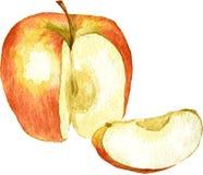 由水彩的整个苹果和切片图画 免版税库存图片