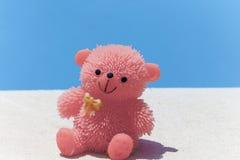 由水池的玩具熊 免版税库存图片