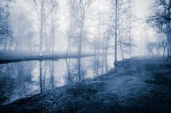 由水的秋天结构树 库存照片