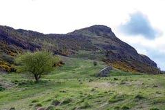 由Arthur's位子决定的一条hillwalking的路线,高峰在爱丁堡Holyrood公园,苏格兰,英国位于 免版税图库摄影