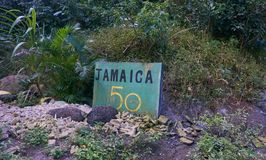 由B1路的边的绿色牙买加50标志在蓝山山脉,牙买加 库存图片
