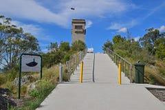 由Goulburn岩石小山战争纪念建筑和博物馆决定的人行道 免版税库存图片