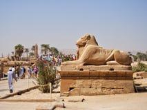 由Karnak寺庙的入口雕塑  库存图片