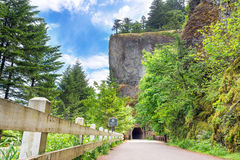 由Oneonta峡谷的隧道 库存照片