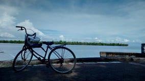 由sea& x27的一辆停放的自行车; s边缘 库存照片