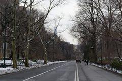 由UES的中央公园 库存照片