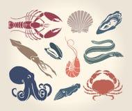 甲壳纲、贝壳和头足纲动物的葡萄酒例证 免版税图库摄影