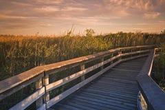 甲板沼泽地国家公园 免版税图库摄影