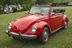 甲虫敞篷车 库存图片