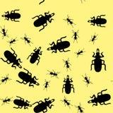 甲虫昆虫无缝的样式665 皇族释放例证