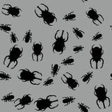 甲虫昆虫无缝的样式663 皇族释放例证