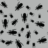 甲虫昆虫无缝的样式662 免版税库存照片