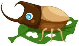 甲虫 皇族释放例证