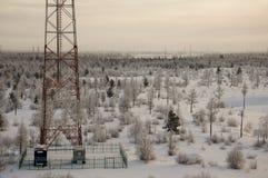 电信耸立和卫星盘在晚上天空的电信网络与日落和冬天北部森林 库存图片
