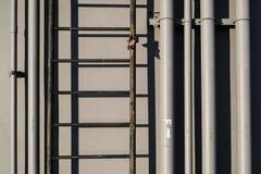 电和水管道和梯子,在工业墙壁背景 免版税库存照片