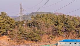 电子塔在森林 图库摄影