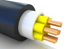 电子的电缆 库存图片