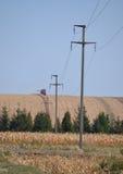 电杆和网络在领域 库存照片