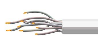 电汇   向量例证