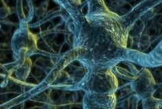 电池神经元 皇族释放例证