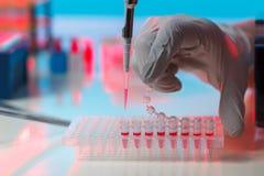 电泳法设备在解码基因的遗传学实验室 免版税库存图片