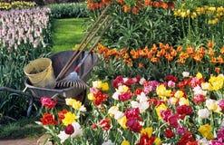 电灯泡从事园艺的春天 库存图片